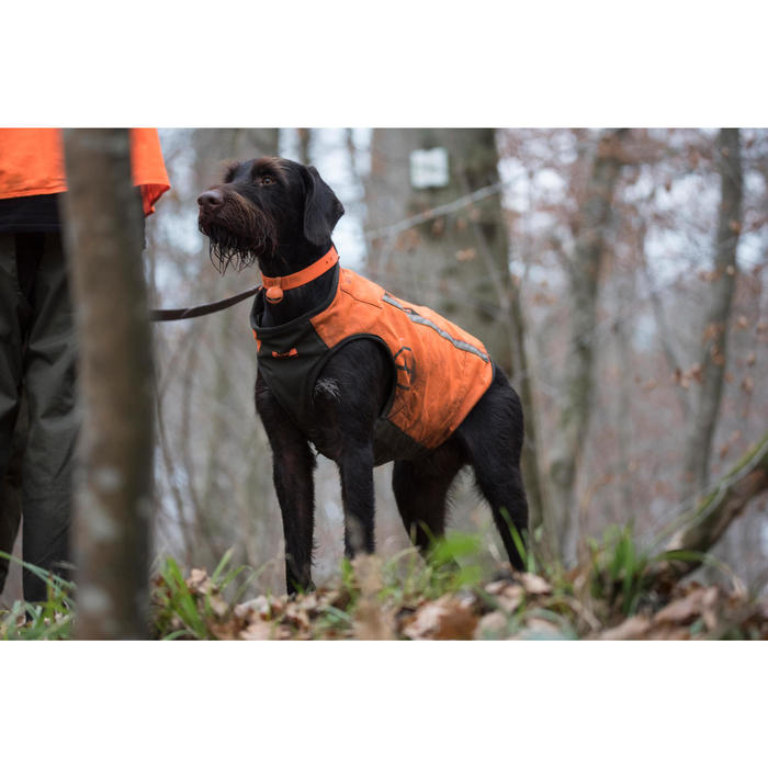 GILET CHIEN SUPERTRACK - 1142492