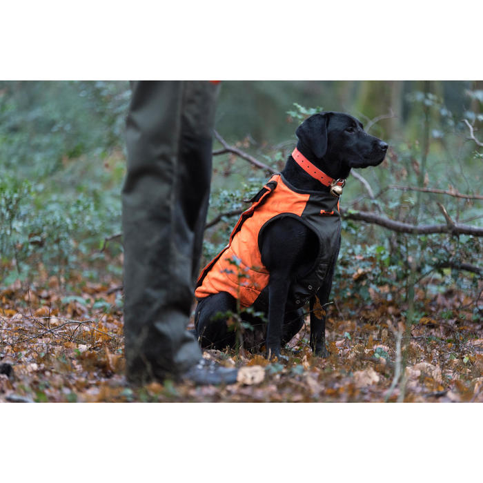 GILET CHIEN SUPERTRACK - 1142496