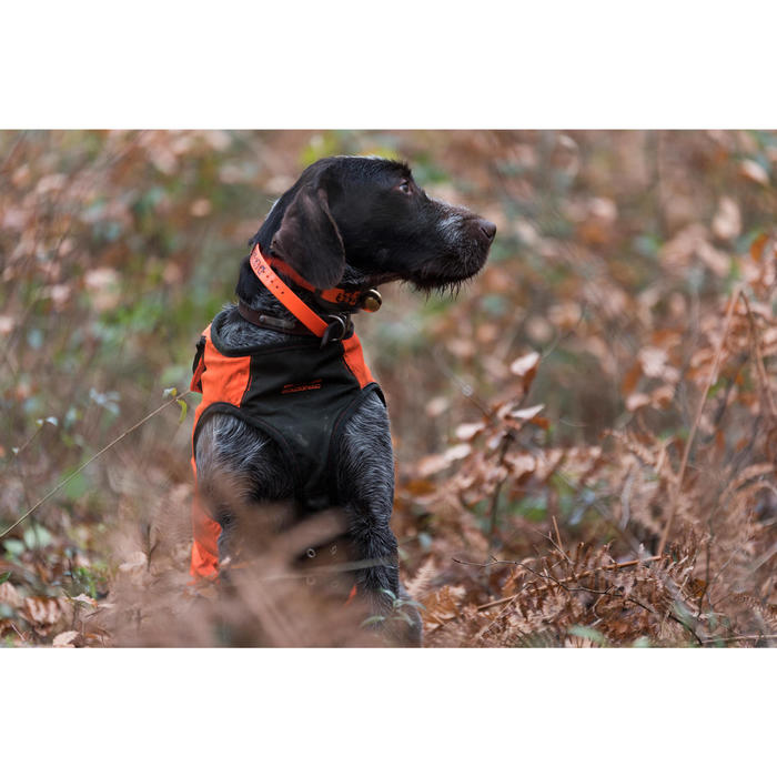 GILET CHIEN SUPERTRACK - 1142504