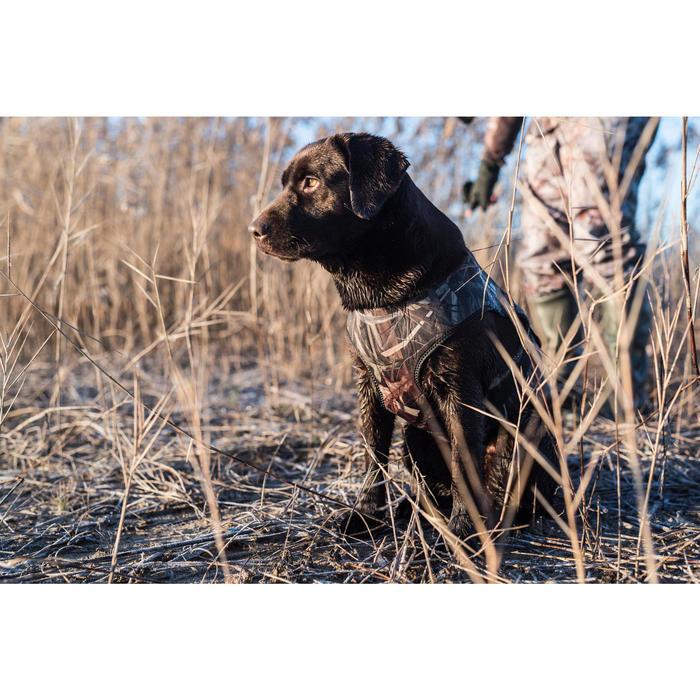 Gilet chien néoprène Outdog 900 pro