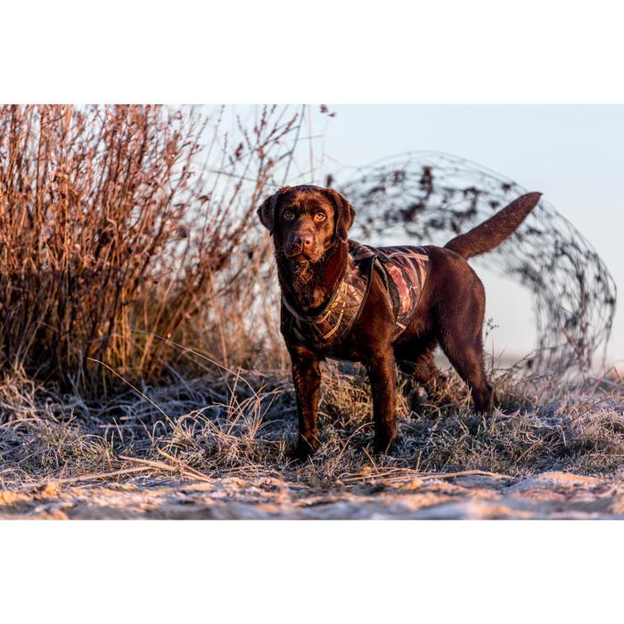 Gilet chien néoprène Outdog 900 pro - 1142894