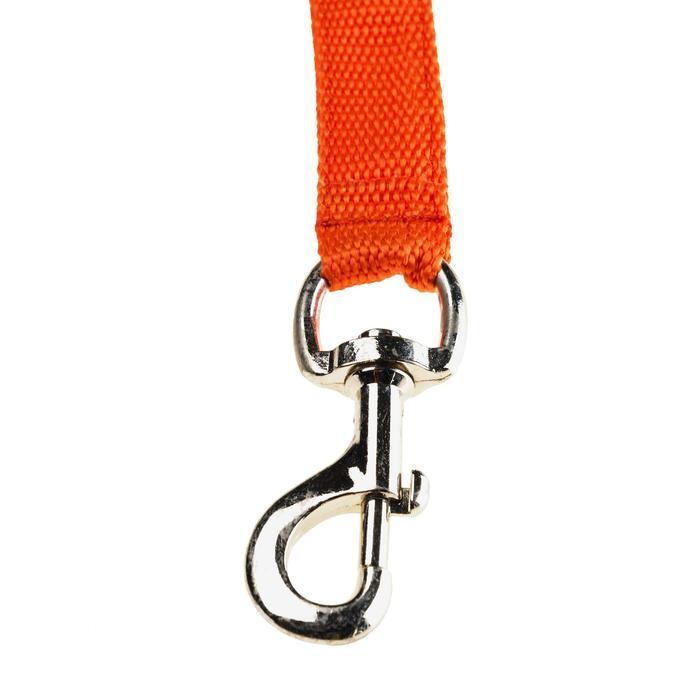 Koppellijn voor 2 jachthonden rood