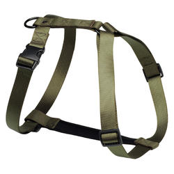 Dog hunting harness...