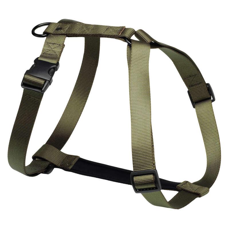 Acc. cane caccia Caccia - Pettorina cane verde  SOLOGNAC - Cane