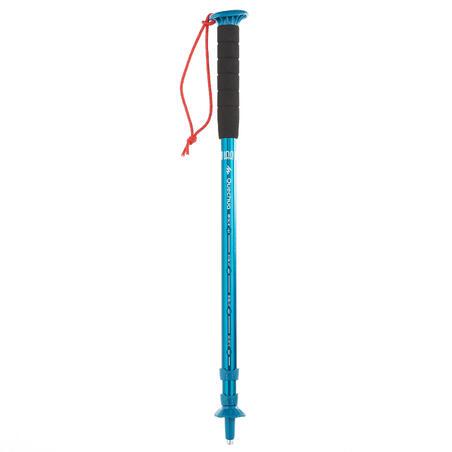 A100 Walking Pole
