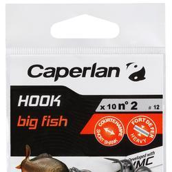HAMEÇON PÊCHE DE LA CARPE HOOK CARP BIG FISH