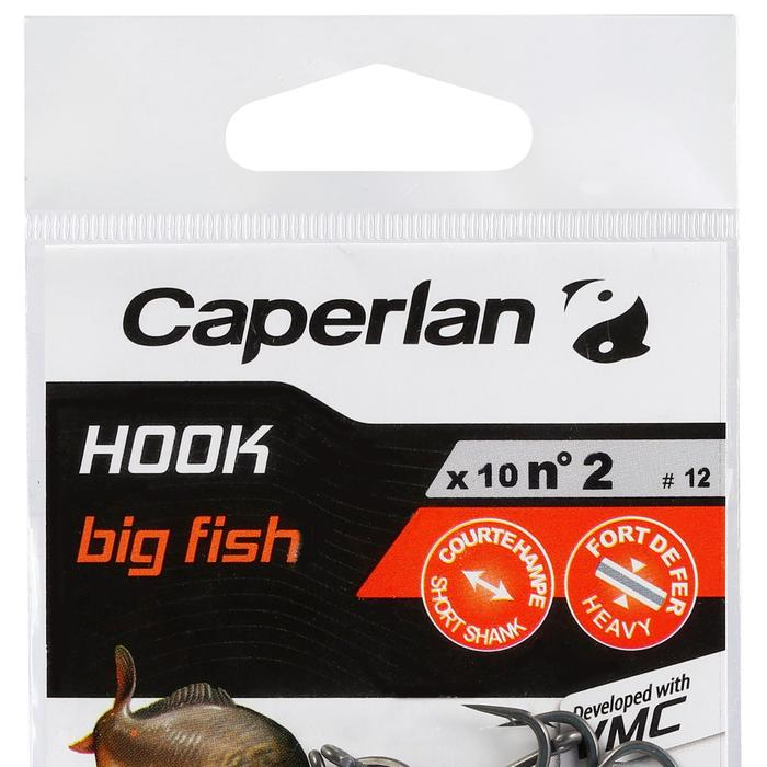 HAMEÇON PÊCHE DE LA CARPE HOOK CARP BIG FISH