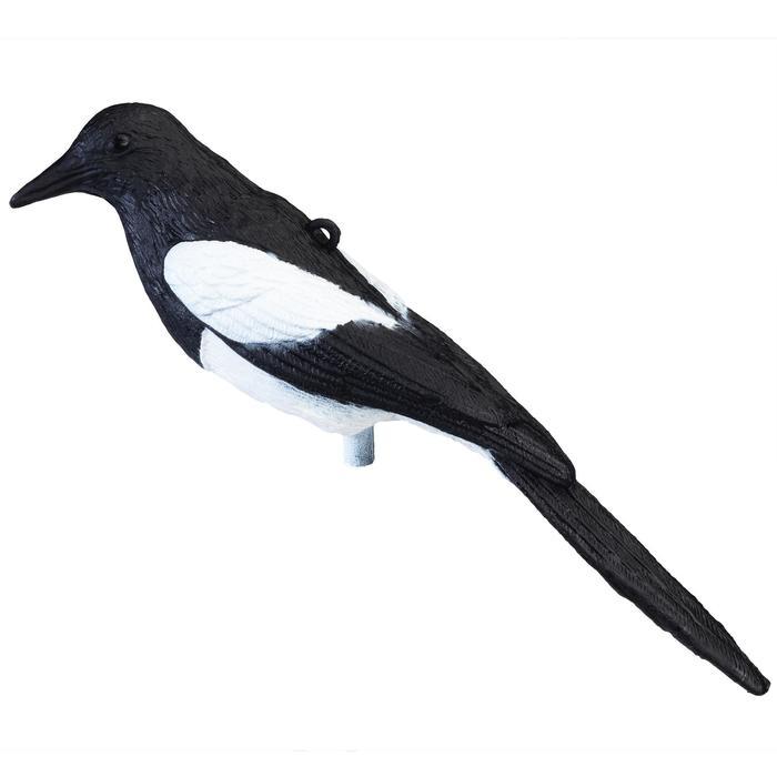 Lockvogel Elster
