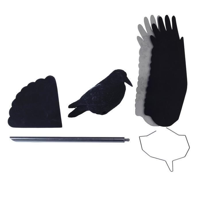 Lokvogel kraai soepele vleugels