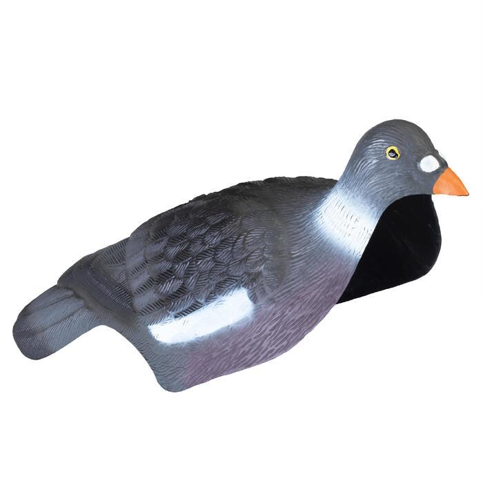 Lockvogel in Tauben-Schale