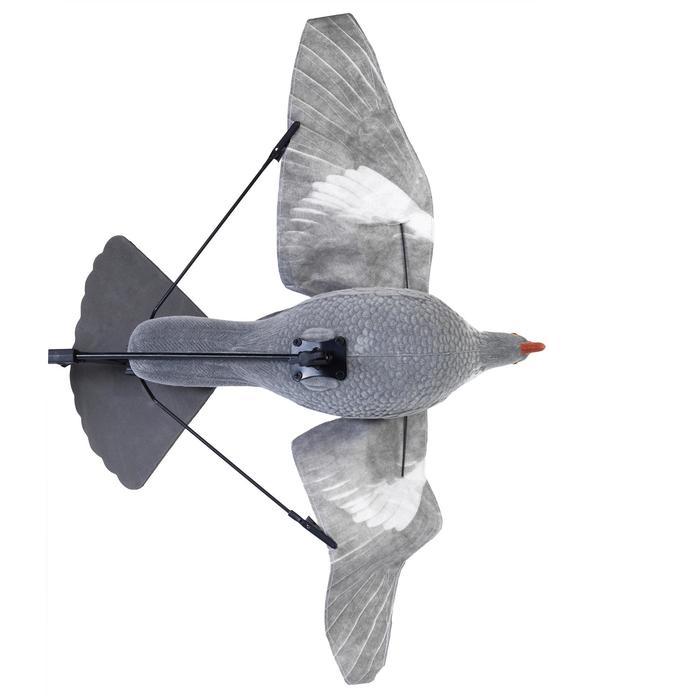 Floater Lockvogel Taube AAP54