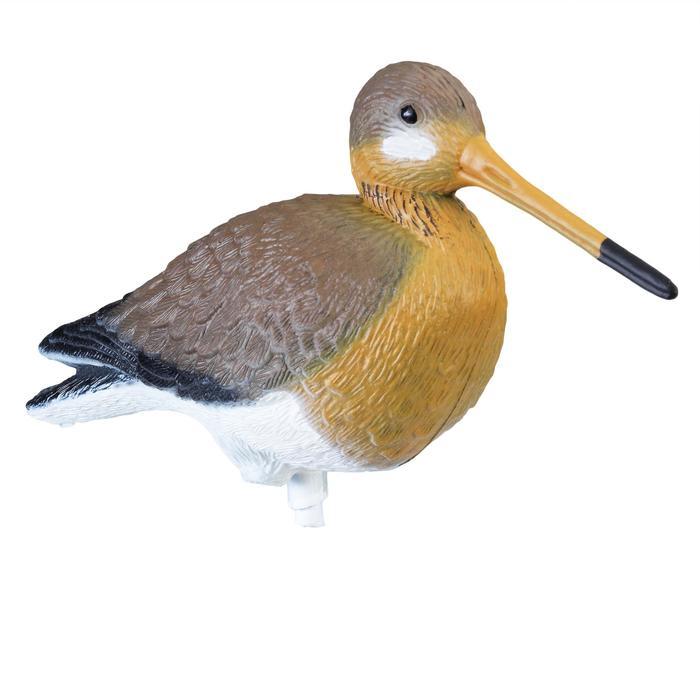 Lockvogel Uferschnepfe