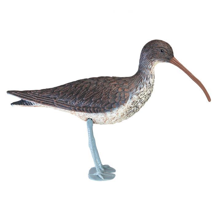 Lockvogel Brachvogel