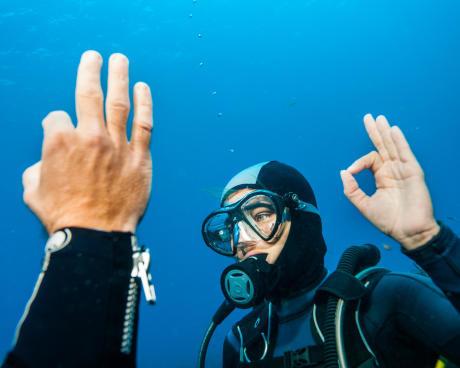 Debaixo de água, uma regra de ouro com parceiro: comunicar sempre!