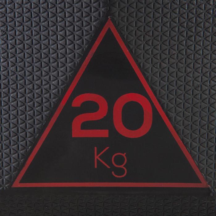 Halter Hex Dumbbell 20 kg