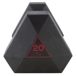 Kurzhantel Hex Dumbbell 20 kg