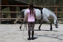 Werksingel ruitersport zwart voor pony's en paarden - 118338