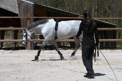 Werksingel ruitersport zwart voor pony's en paarden - 118339