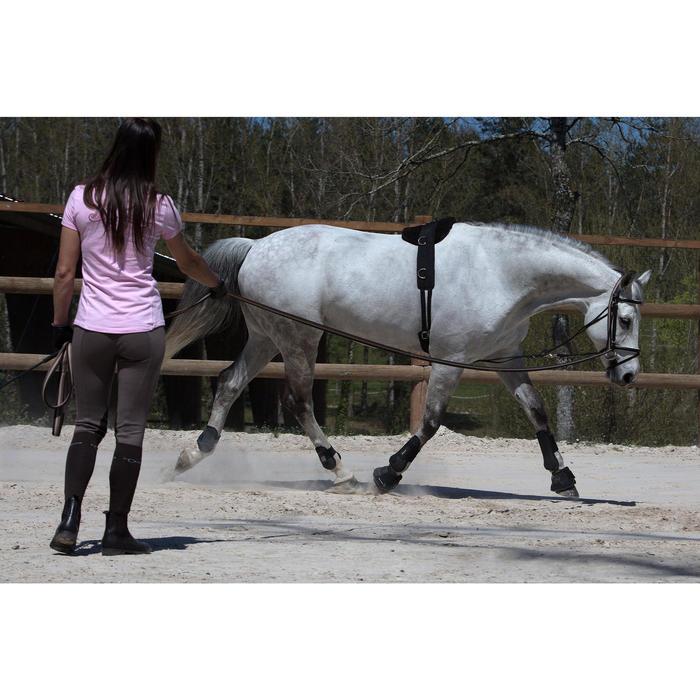 成馬或小馬用馬術訓練肚帶-黑色