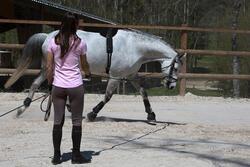Werksingel ruitersport zwart voor pony's en paarden - 118345