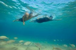 Neopreen badmuts OWSwim voor koud open water - 1204695