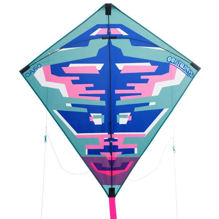 2-in-1 vlieger (bestuurbaar <-> niet bestuurbaar) Izypilot 100