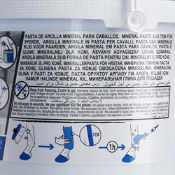 Arcilla Refrescante Equitación Fouganza Caballo y Poni 2,5 kg