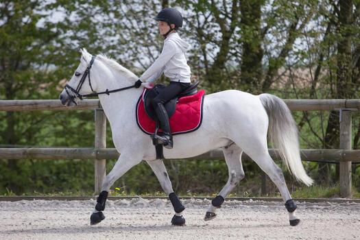 Casque équitation 500 - 1222747