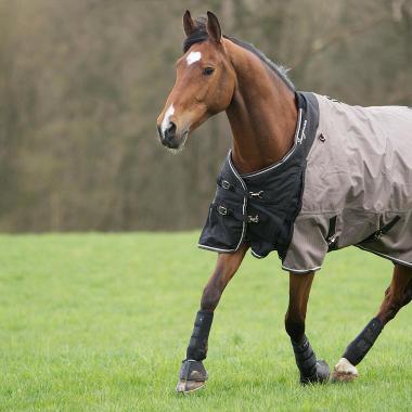 Alt/comment-choisir-couverture-cheval