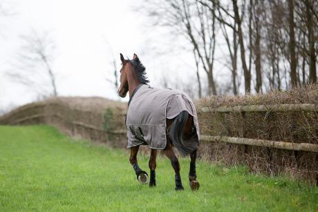 Alt/comment-choisir-couverture-cheval-extérieur-1