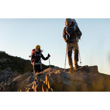 Herenbroek voor bergtrekking Trek 900 bruin