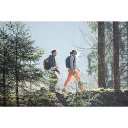 Rugzak wandelen in de natuur NH500 20 l grijs