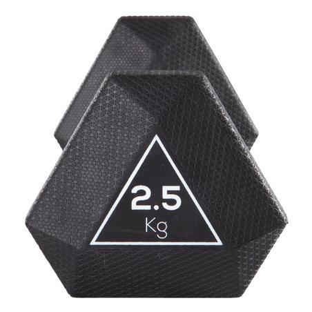 HALTERE HEX DUMBBELL 2,5 KG