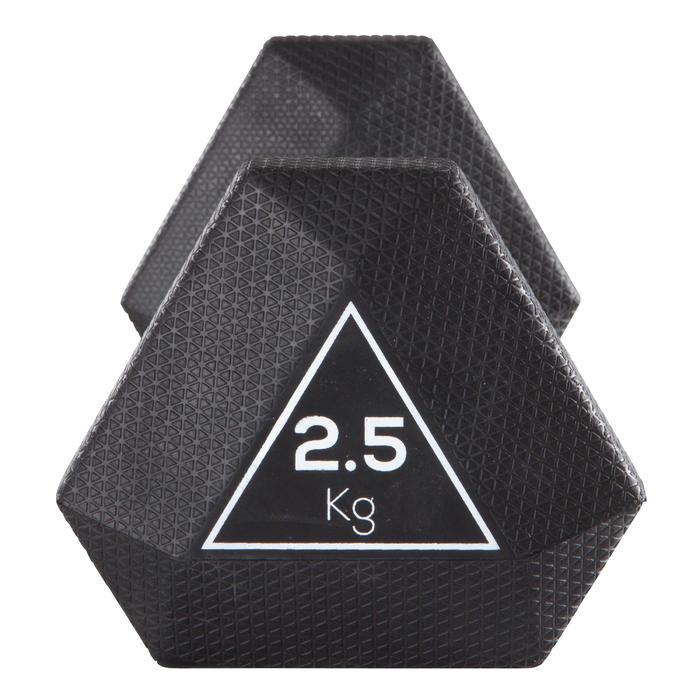 Halter Hex Dumbbell 2,5 kg