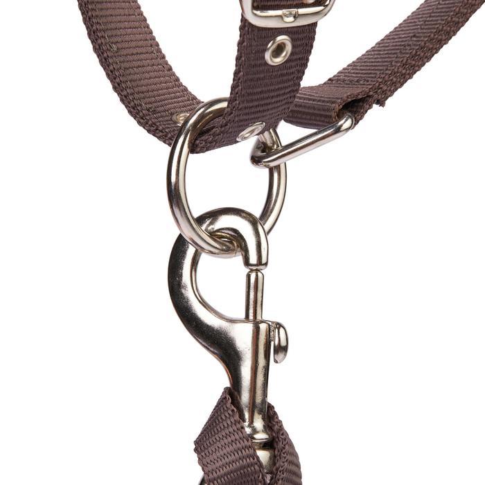 Licol + longe équitation poney et cheval WINNER - 1256348