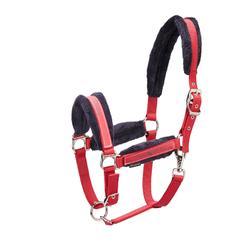 Kit cabestro + ronzal equitación poni y caballo WINNER rojo