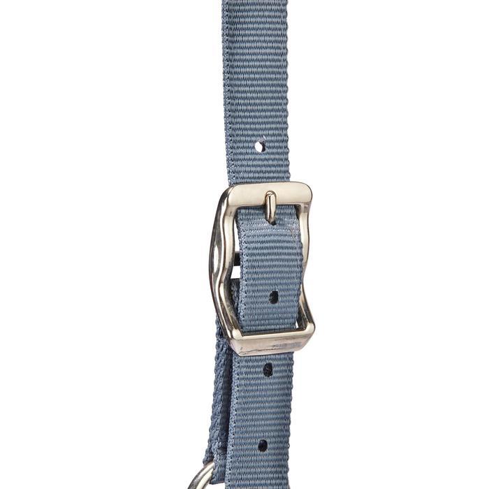 Pack licol + longe équitation cheval CLASSIC bleu-gris