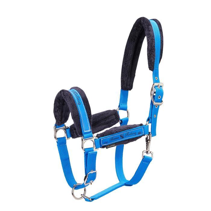 Pack licol + longe équitation cheval et poney WINNER bleu roi