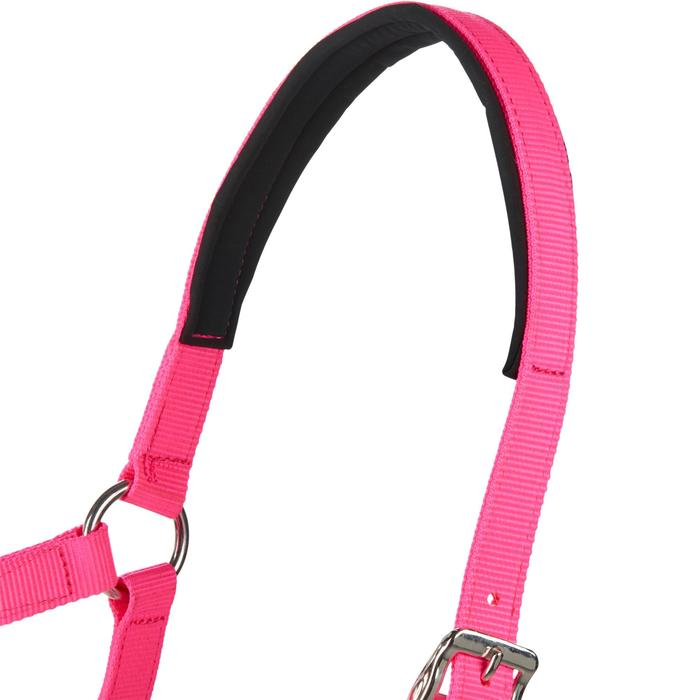 Cabestro + ronzal equitación poni y caballo CLASSIC Rosa