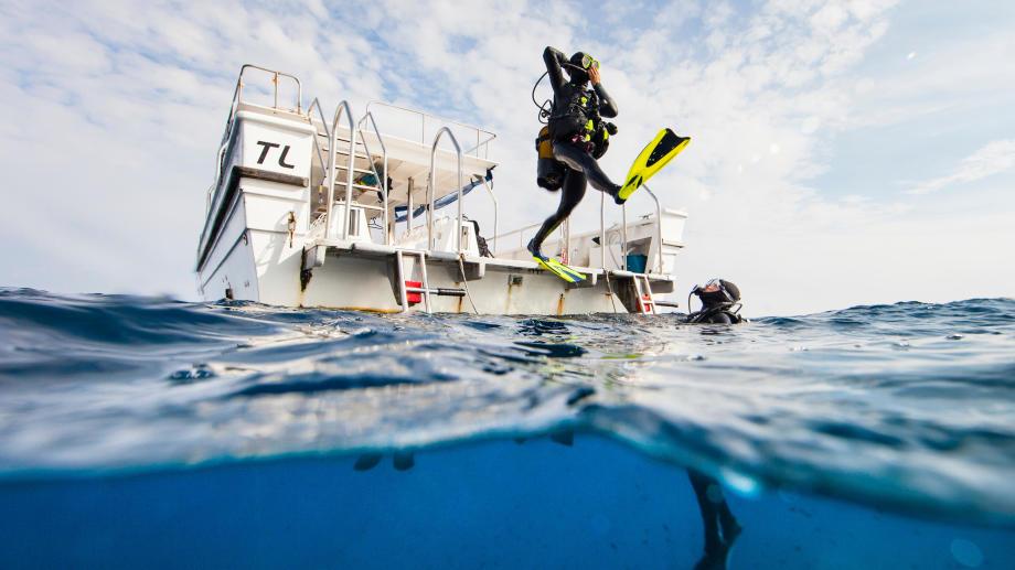 FFESSM partenaire Decathlon subea plongee
