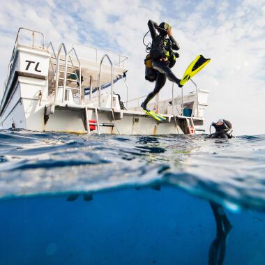 Entdecke die Tiefen des Ozeans beim Tauchen und begeistere dich für Scuba Diving