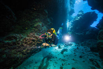 Le gilet stabilisateur scd 500n vu dans plongeurs international