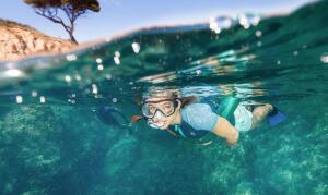 Les avantages d'un apport de flottabilité en snorkeling, randonnée palmée