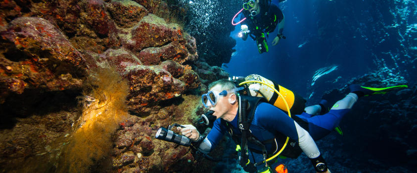 combinaisons de plongée eaux chaudes SCD 540 3mm subea