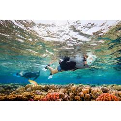 Palmes de snorkeling SNK 500 adulte noires et vertes menthe