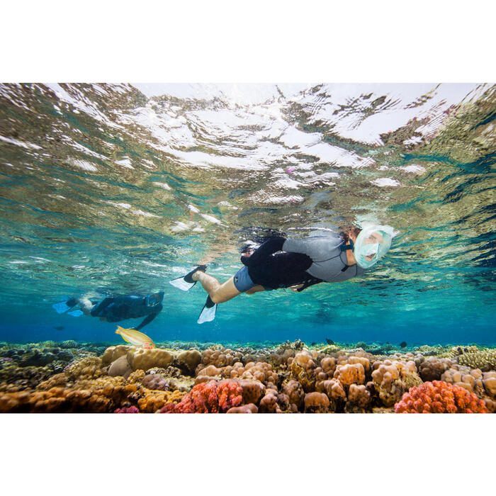 Palmes de snorkeling SNK 520 adulte noires et vertes menthe