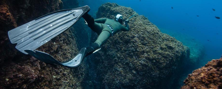 conseil lexique chasse sous-marine subea
