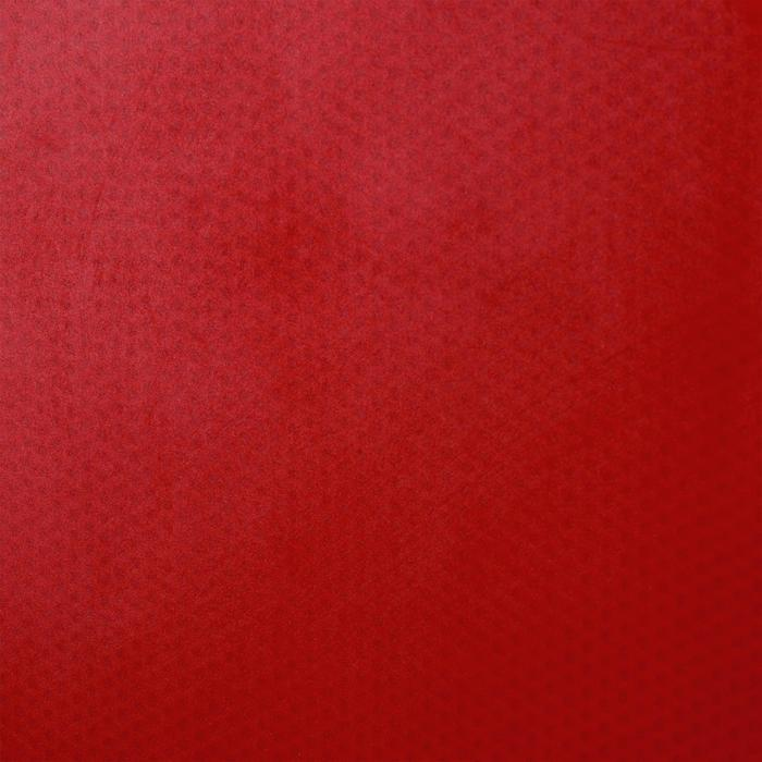 Tafeltennisbatje / Pingpongbatje PPR 100 1*