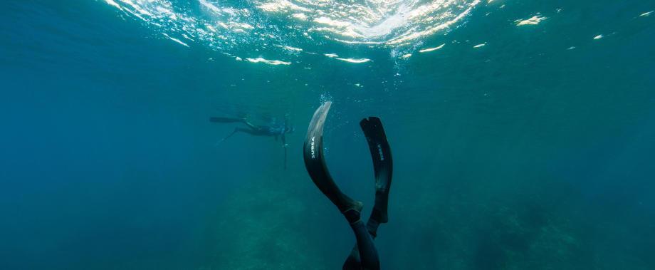 palmes d'apnée chasse sous-marine subea test plongeurs international