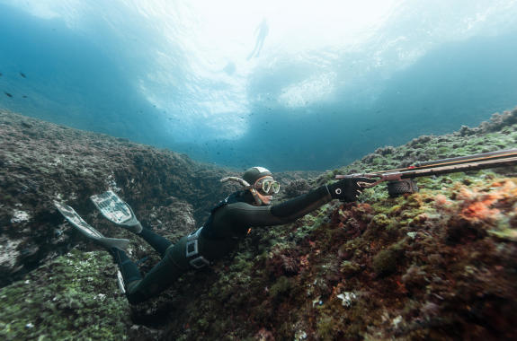 agachon chasse sous marine subea